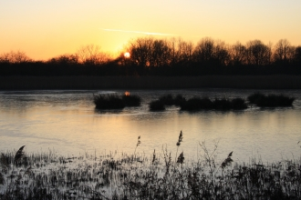 Sunset at Potteric Carr Credit Adrian Gray