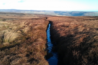 Gully on peatland