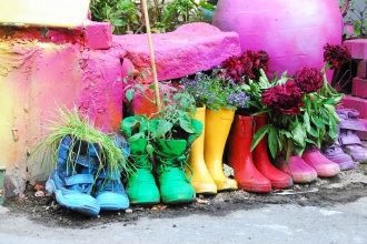 Rainbow welly planters