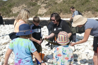 Seashore Detective event Yorkshire Wildlife Trust