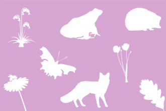 Wildlife silhouettes pink