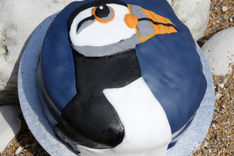 A close up of a delicious cake, decorated with a fondant puffin.