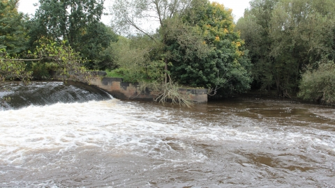 Kirkstall Valley Nature Reserve lower weir - Jim Horsfall