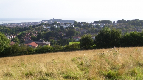 View towards Scarborough Castle - Harland Mount Nature Reserve - Elizabeth Round