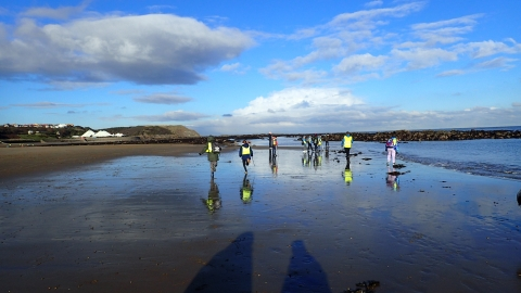 Beach clean at Scarborough North