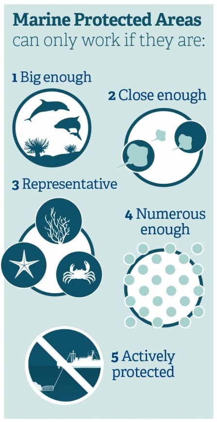 Marine Protected Area infographic