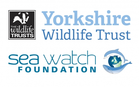 Yorkshire Wildlife Trust and Sea Watch foundation logos