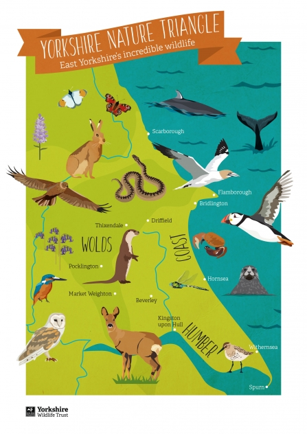 Yorkshire nature triangle wildlife map