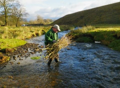Volunteer on the Upper Aire