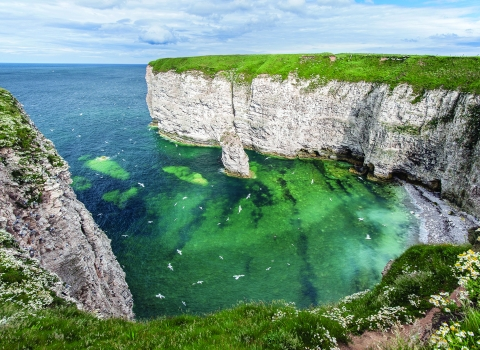 Flamborough Cliffs (credit: George Stoyle)