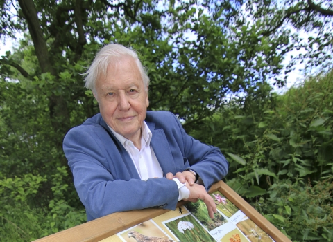 David Attenborough at Askham Bog